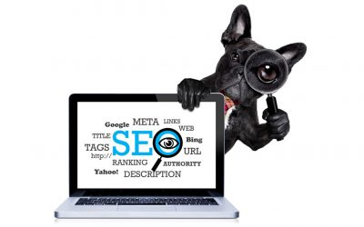 Why Every Pet Grooming Business Needs SEO