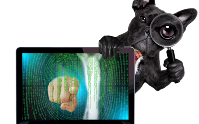 Importance of Cybersecurity for Pet Grooming Businesses and Their Owners