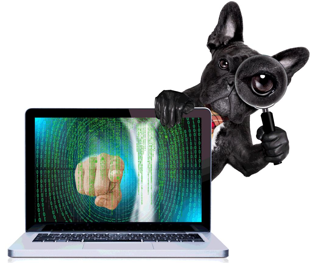 Cybersecurity Dog with Matrix
